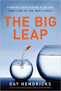 The Big Leap book cover